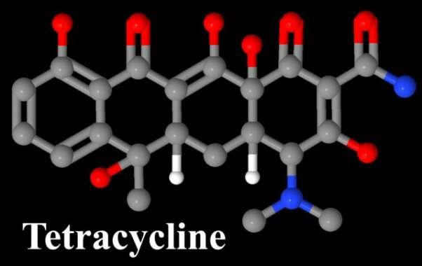 http://thescienceofacne.com/wp-content/uploads/Tetracycline-Sumycin-Molecule-640x404.jpg?a355a6