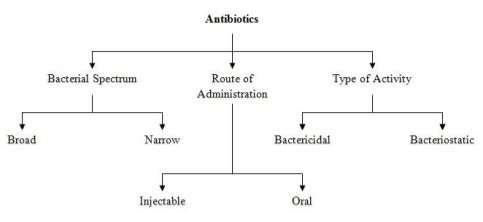 https://explorable.com/images/antibiotics.jpg