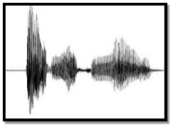 http://aitopics.org/sites/default/files/representative_images/SpeechSignal.jpg