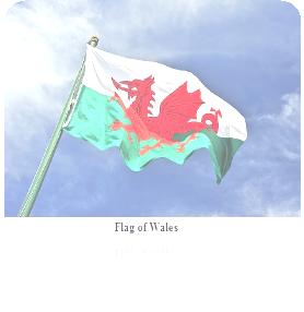 welsh-flag-broadband-internet-web.jpg