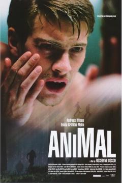 Poster Animal