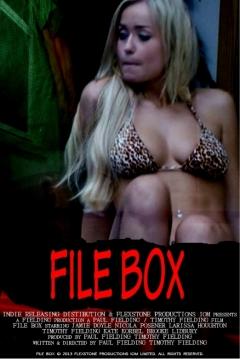 Poster File Box