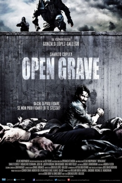 Poster Open Grave