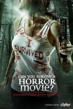 Poster Can You Survive a Horror Movie?