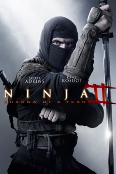 Poster Ninja 2