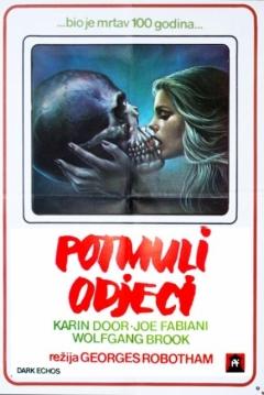 Poster Dark Echo