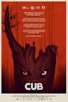 Poster Cub