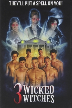 Poster 3 Wicked Witches