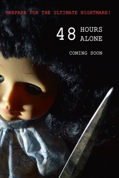 Poster 48 Hours Alone