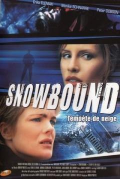 Poster Atrapadas en la Nieve