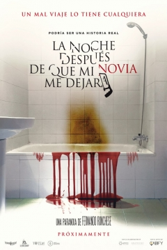 Poster La Noche Después De Que Mi Novia Me Dejara