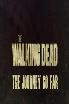 Poster El Camino hasta ahora