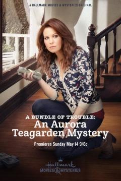 Poster Un Misterio para Aurora Teagarden: Un Montón de Problemas