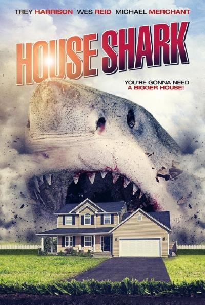Poster House Shark