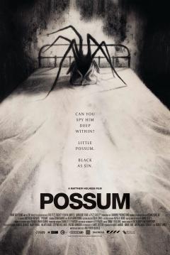 Ficha Possum