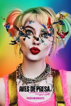 Poster Aves de Presa