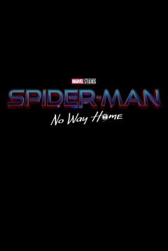 Poster Spider-Man: Sin Camino a Casa