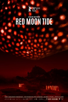 Poster Luna Roja