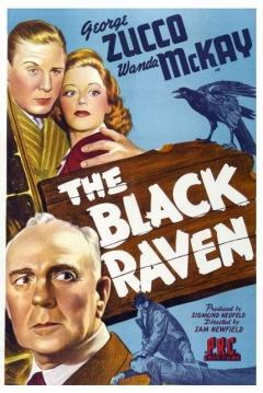 Poster The Black Raven