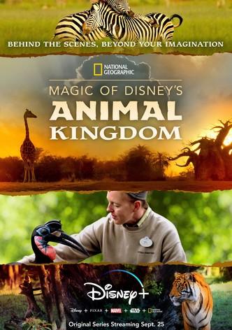 Magic of disneys animal kingdom