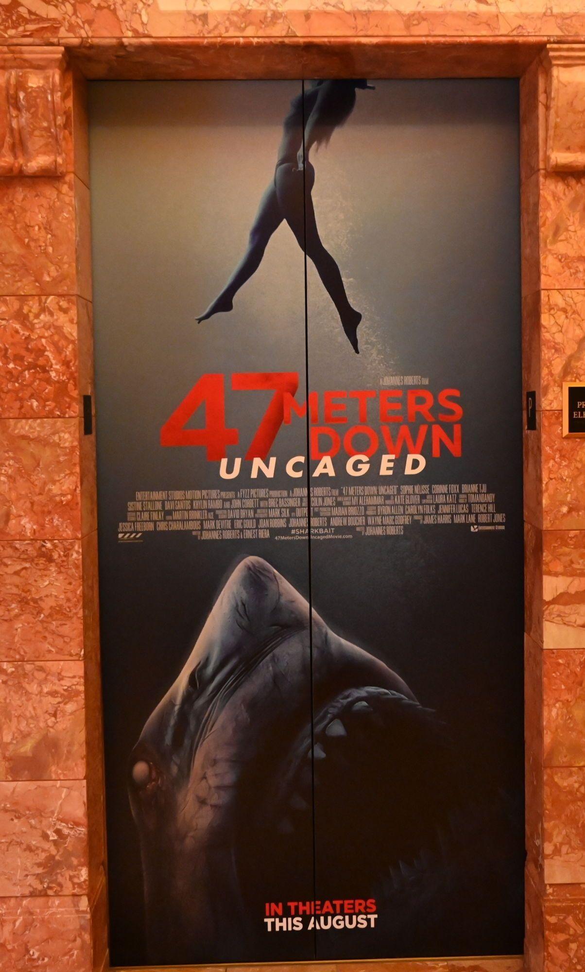 Película A 47 Metros 2 El Terror Emerge 2019 Abandomoviez Net