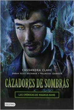 Poster Crónicas de Magnus Bane