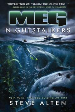 Poster Meg: Nightstalkers