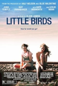 Poster Little Birds