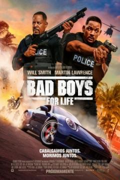 Poster Dos Policías Rebeldes 3