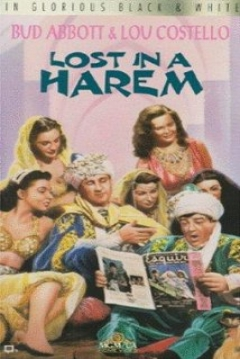 Poster Lost in a Harem