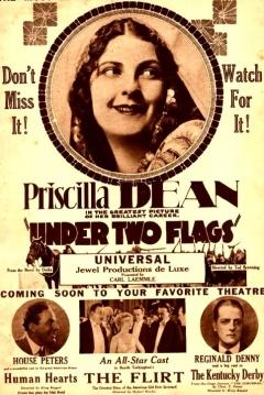 Poster Bajo Dos Banderas