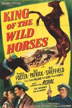 Poster King of the Wild Horses