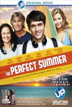 Poster The Perfect Summer