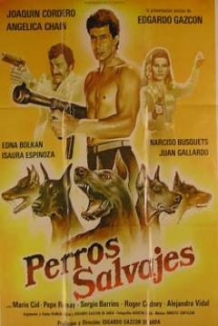 Poster Perros salvajes