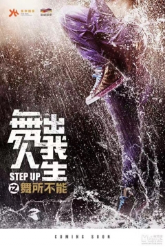Poster Step Up 6