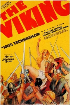 Poster The Viking