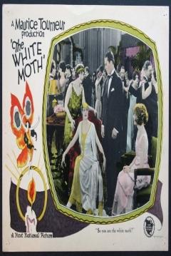 Poster La Mujer que Supo Resistir