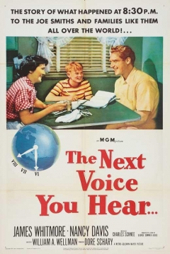 Poster The Next Voice You Hear...