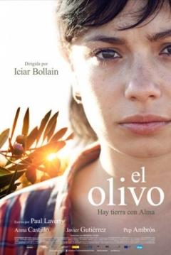 Poster El Olivo