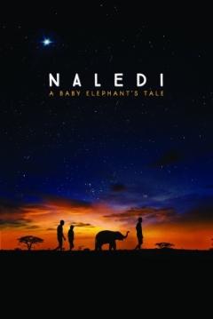 Poster Naledi: A Baby Elephant's Tale