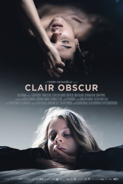 Poster Clair Obscur