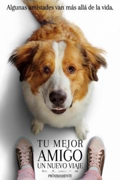 Poster Tu mejor amigo 2: Un nuevo viaje