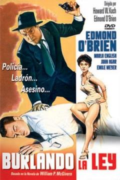 Poster Burlando la Ley
