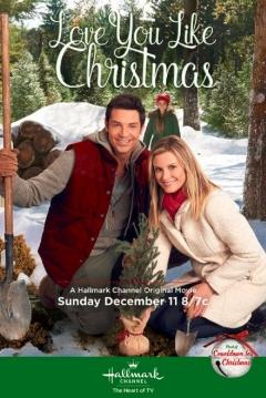 Poster El valle de la Navidad
