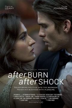 Poster Afterburn/Aftershock