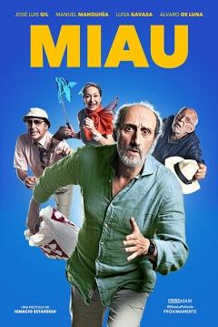 Poster Miau