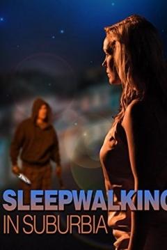 Poster Perdida en la Noche