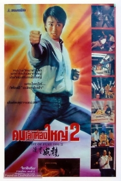 Poster Fist of Fury 1991 II