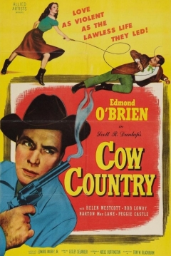 Poster Cow Country