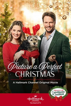 Picture A Perfect Christmas (2019)   abandomoviez.net